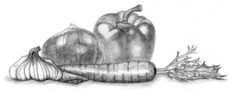 veggiessketch